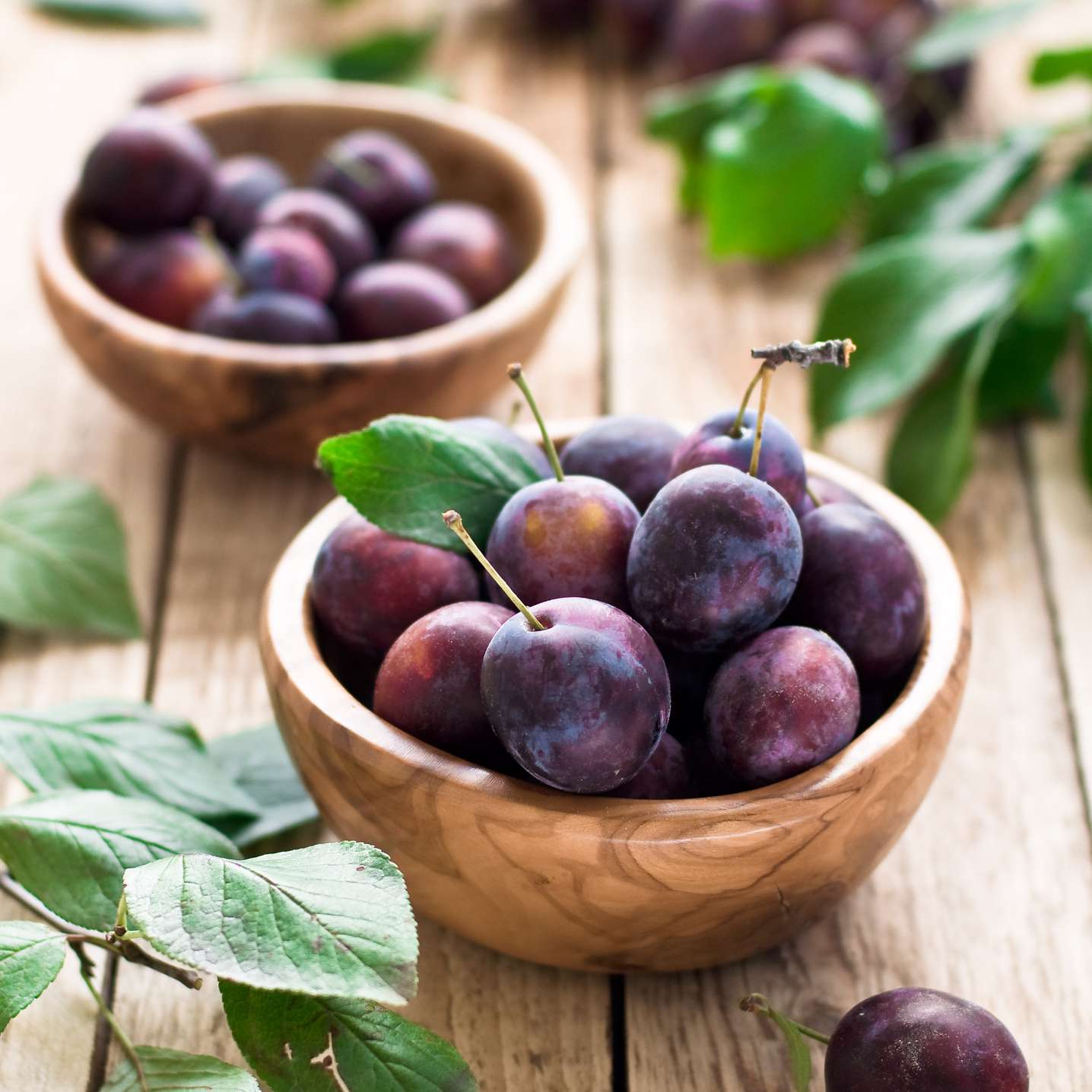 Bowls of fresh plums