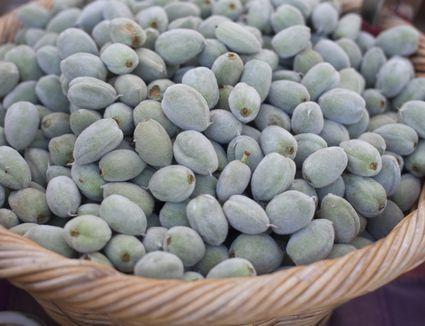 Basket of Green Almonds