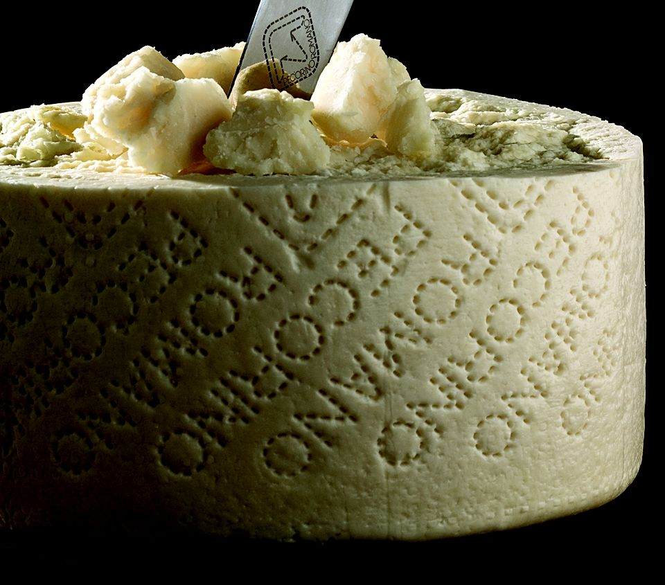 A wheel of Pecorino Romano cheese