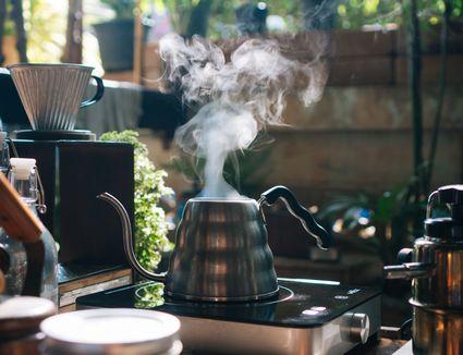 gooseneck tea kettle