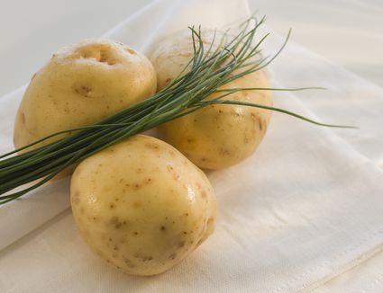 Yukon gold potatoes close-up