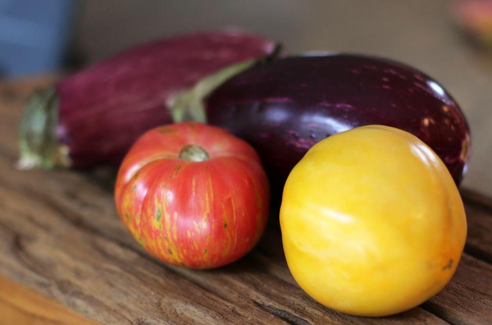 tomatoes-and-eggplants-18.jpg