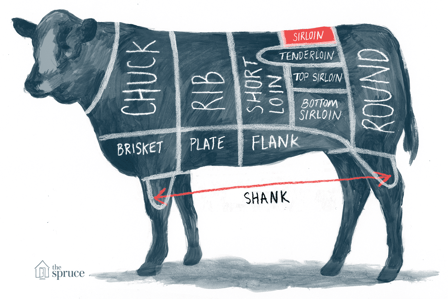 Annotated illustration of beef sirloin