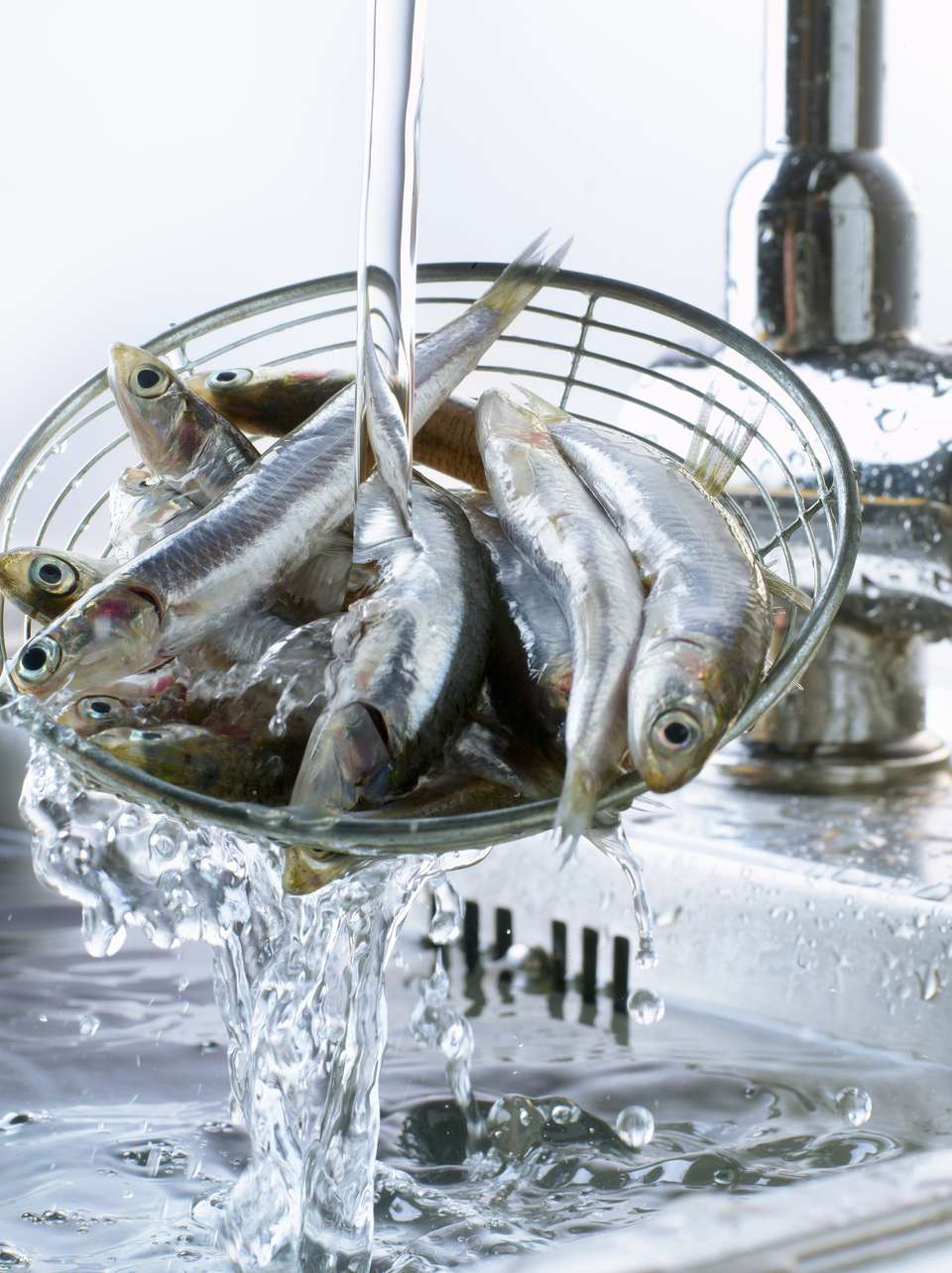 Cleaning Anchovies in the Sink