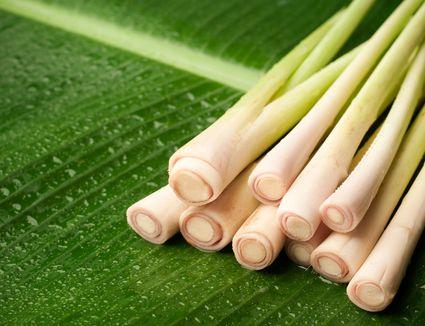 Lemongrass stems
