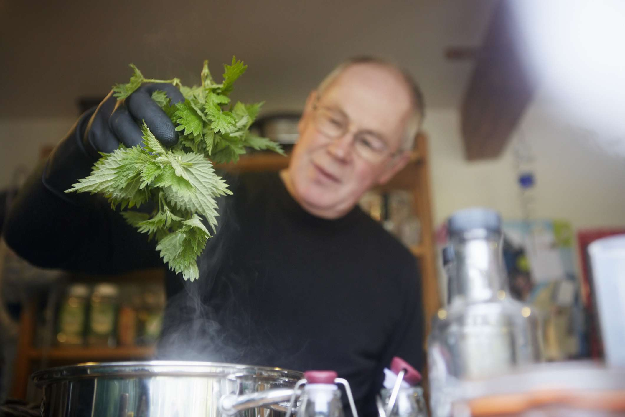Cooking with stinging nettle