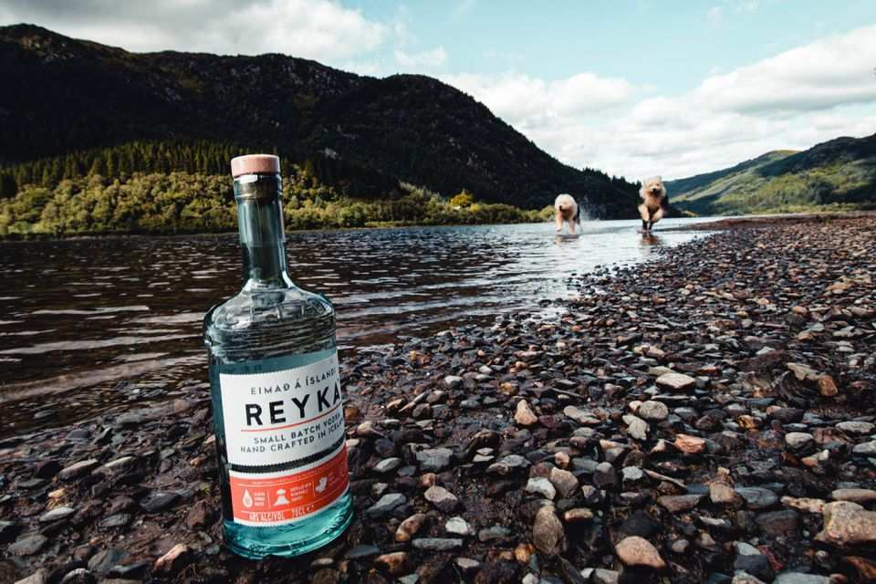 Reyka Vodka From Iceland