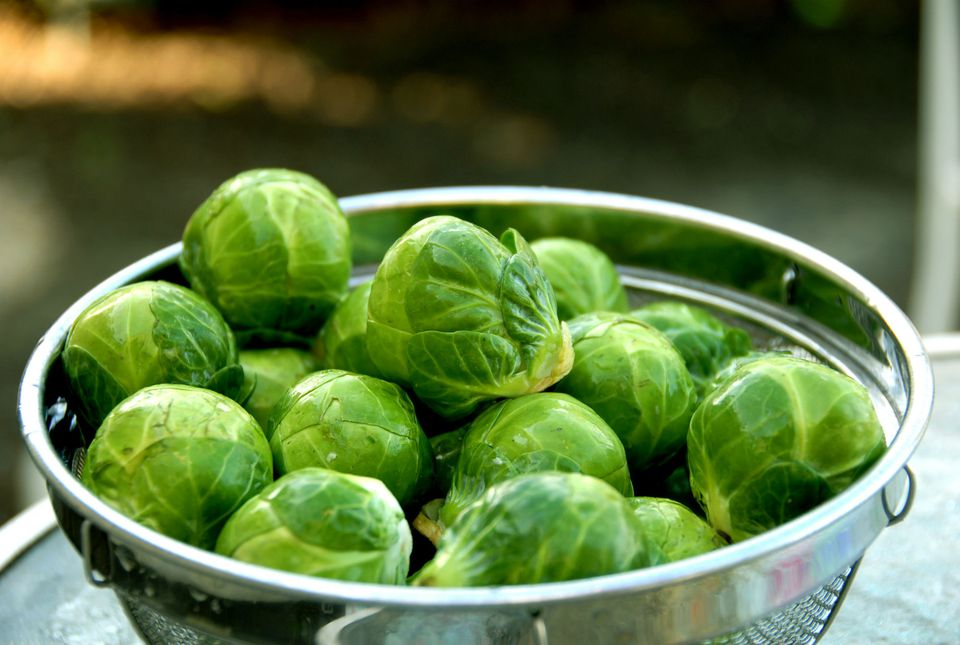 Brussels Sprouts, Healthy Food, Vegetables in Colander