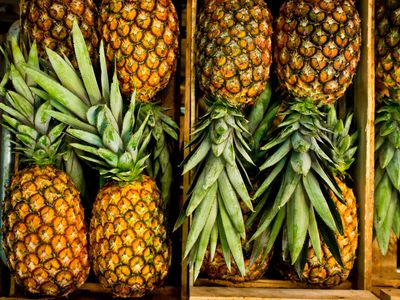 The Unique History And Symbol Of The Pineapple