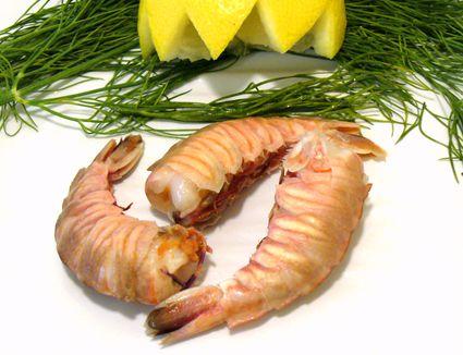 Rock shrimp with garnish