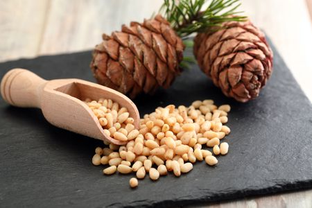 where do pine nuts come from