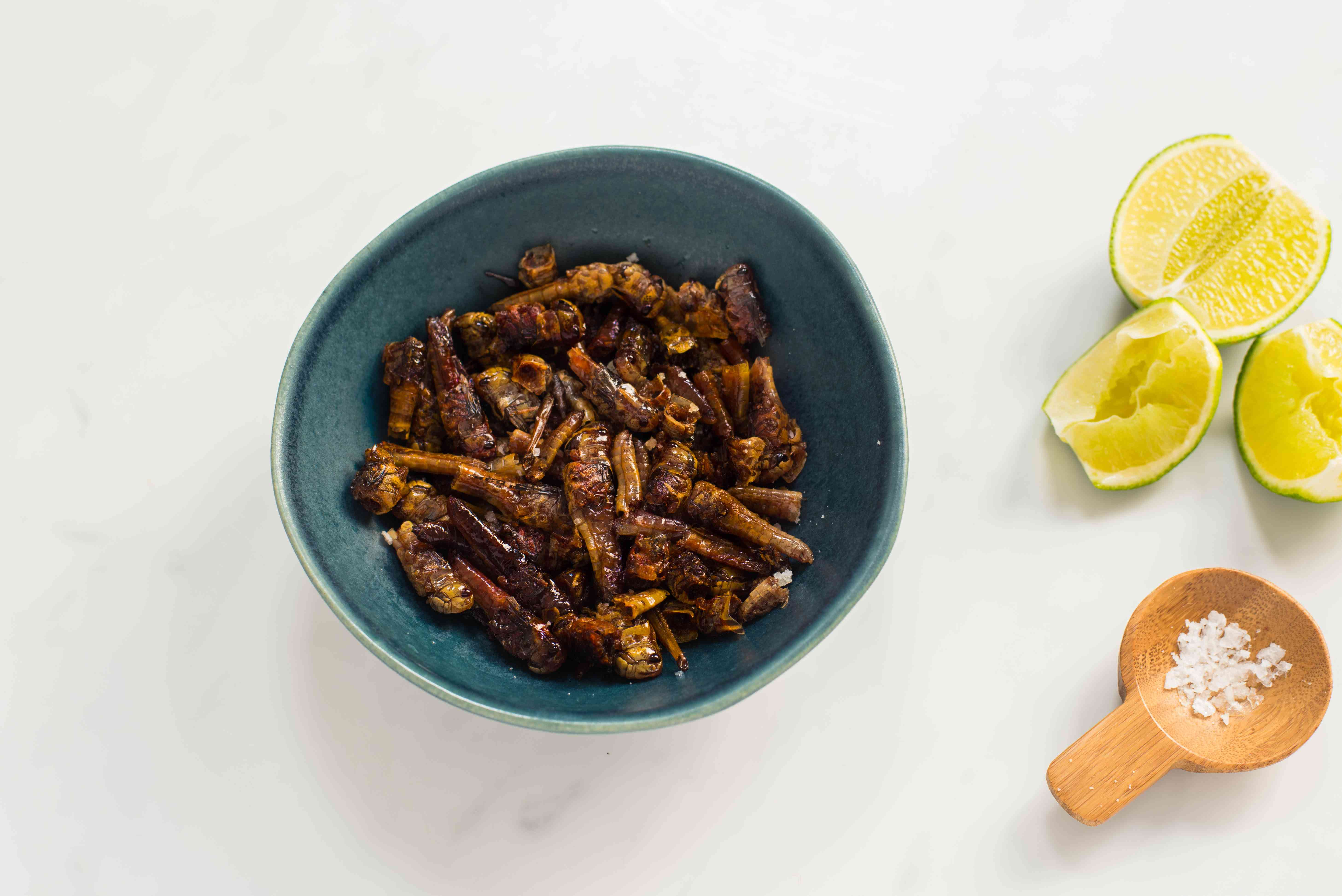 Grasshoppers in a bowl sprinkles with salt