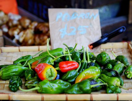 A Slow Food Farmers Market stall selling Padrón peppers