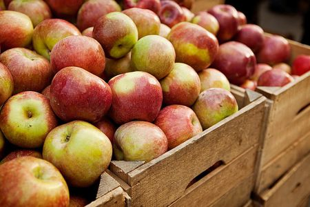 Fruits and Vegetables - What's in Season in Fall?