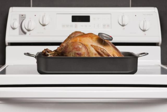 Turkey on top of oven with thermostat pinned in