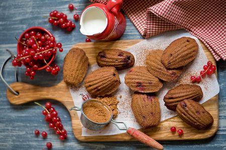 madeleines - Classic Christmas Desserts