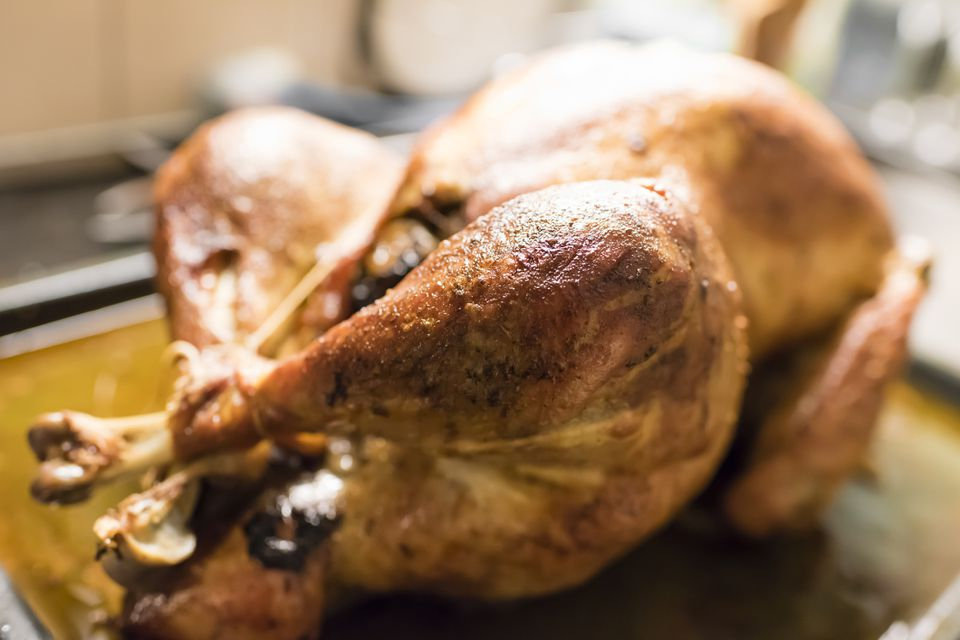 Close up of a crispy roast turkey, freshly out of the oven.