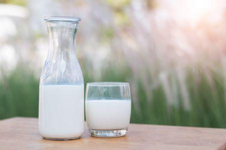 Pros and Cons of Organic Milk vs Regular Milk