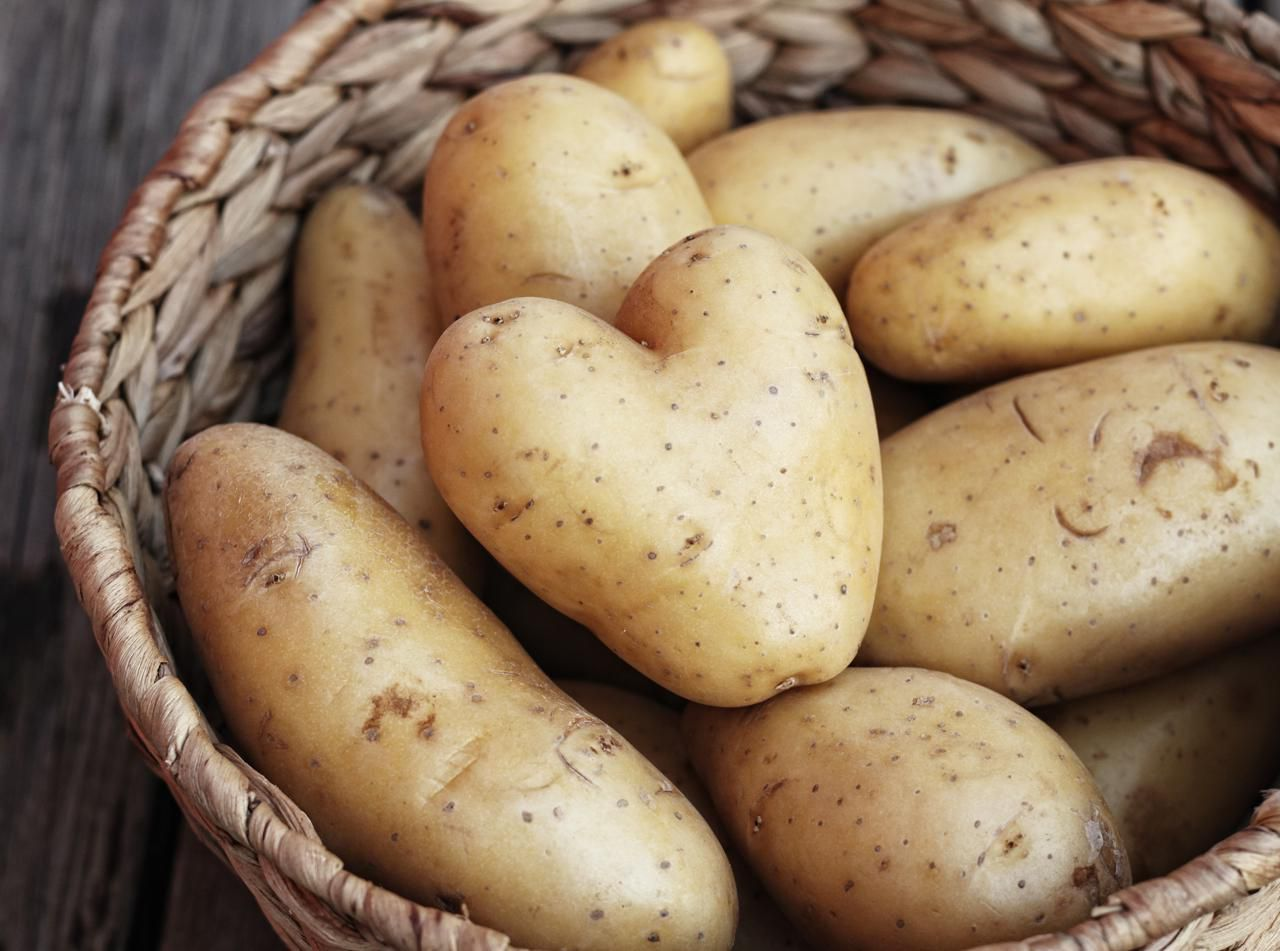 Store Potatoes to Maximize Freshness