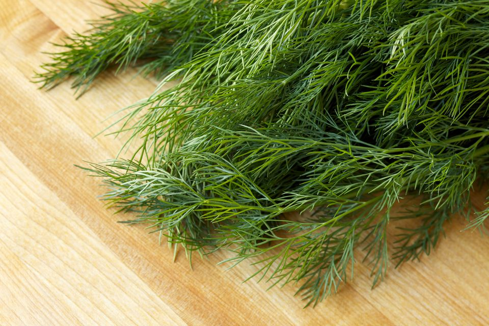 Fresh organic dill on new wood surface