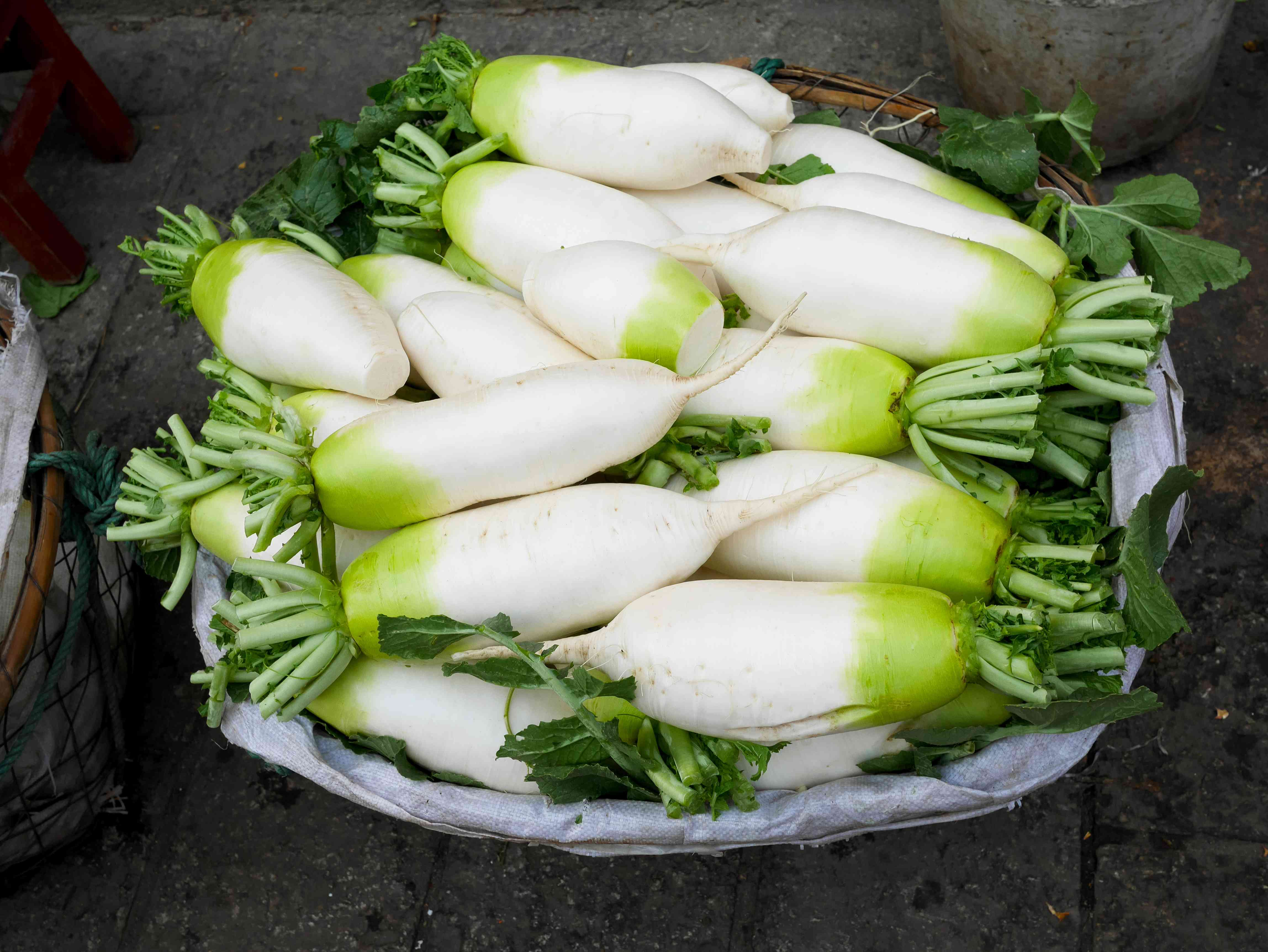 Asian long white radishes or Daikon in a basket