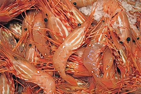 What Are Spot Prawns? Absolutely Delicious