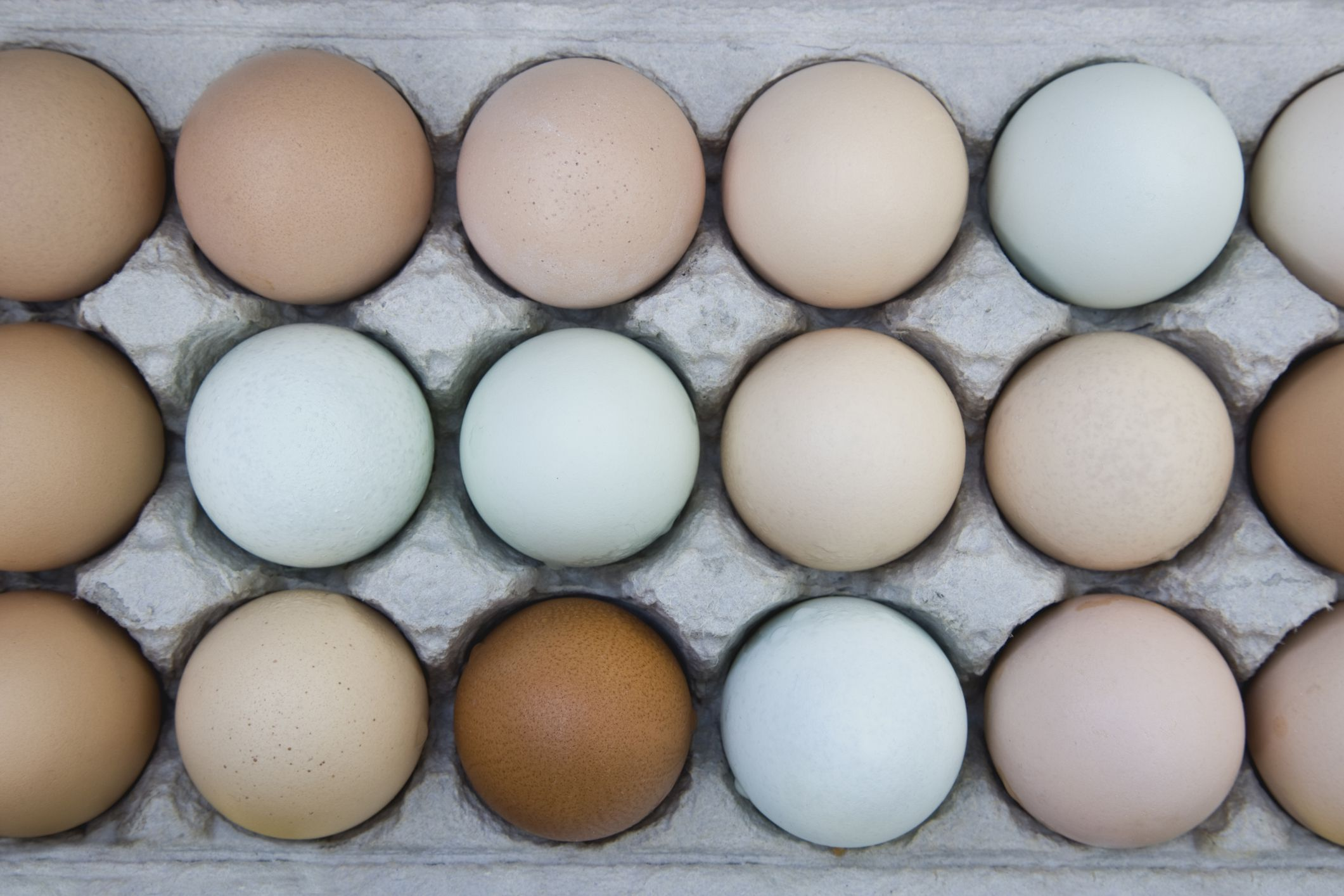 Here Are Tips on How to Keep Store and Preserve Eggs for Months