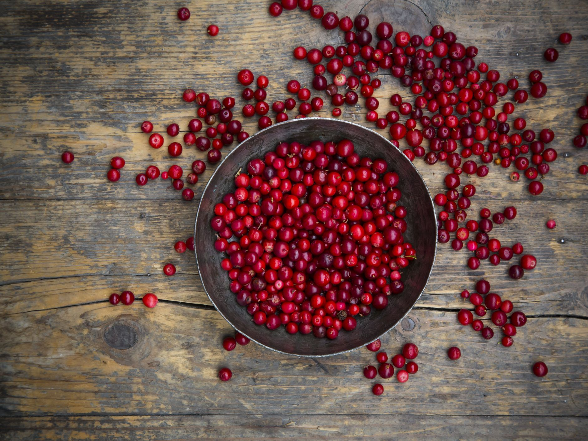 What Are Lingonberries And How Are They Used