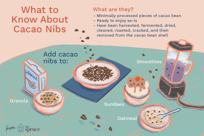 Cacao nibs illustration
