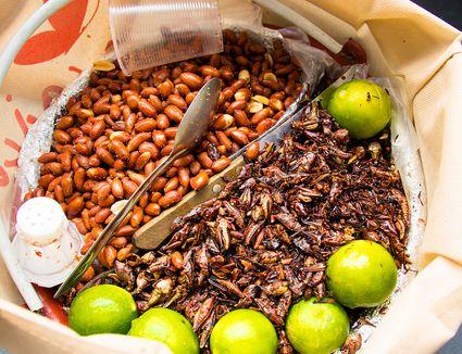 Chapulines and peanuts