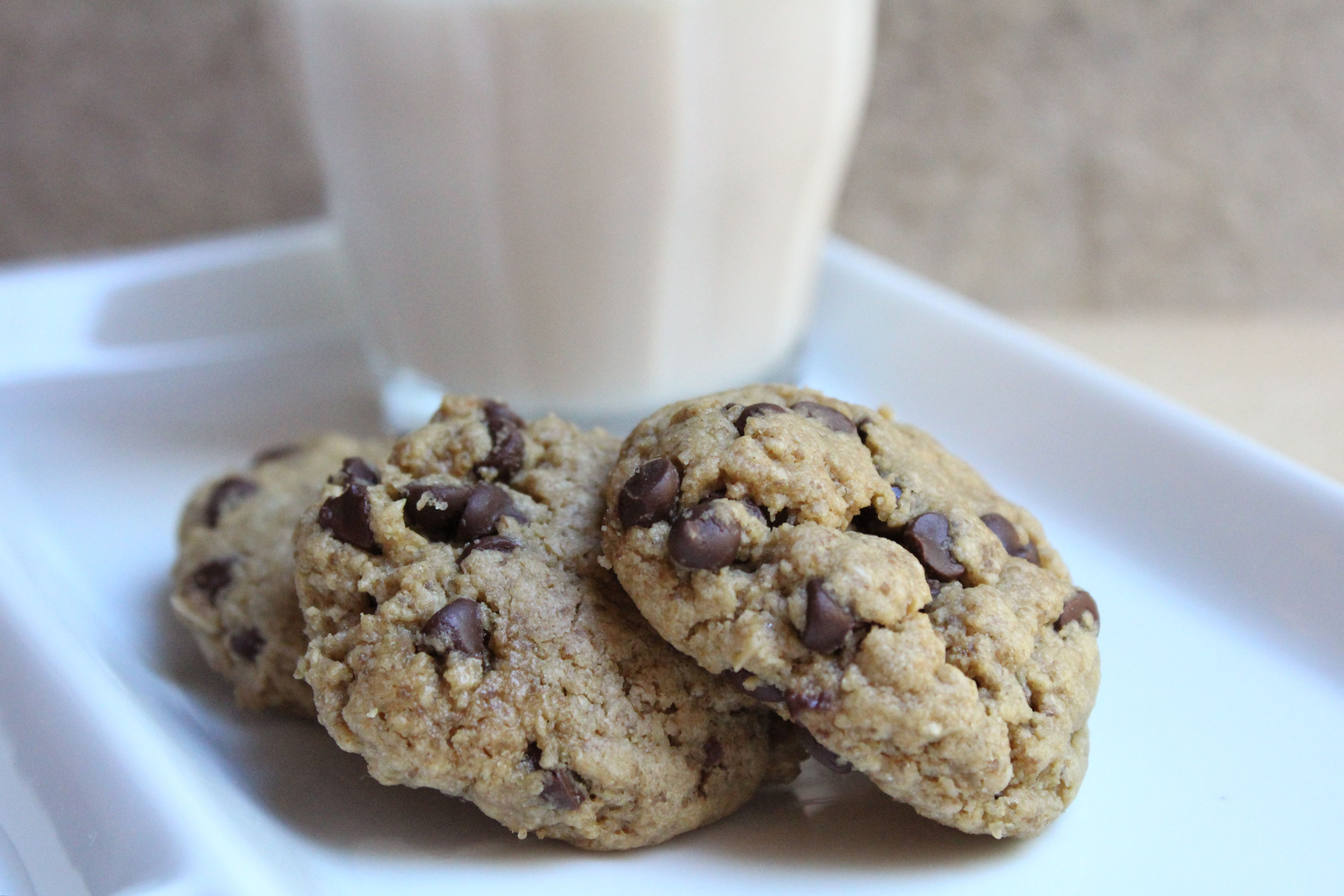Chocolate chip sunbutter cookies with a glass of milk