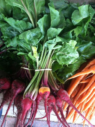 Beets and Carrots at Market