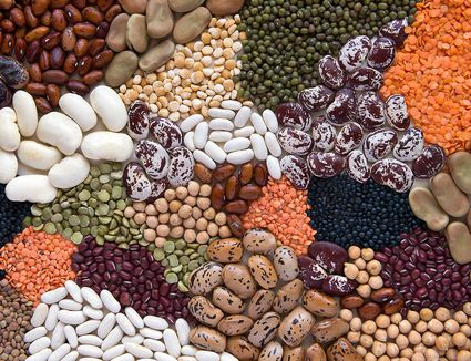 Texture of various types of pulses