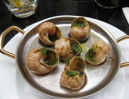 escargot on a plate