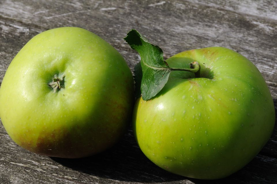 British Bramley Apples