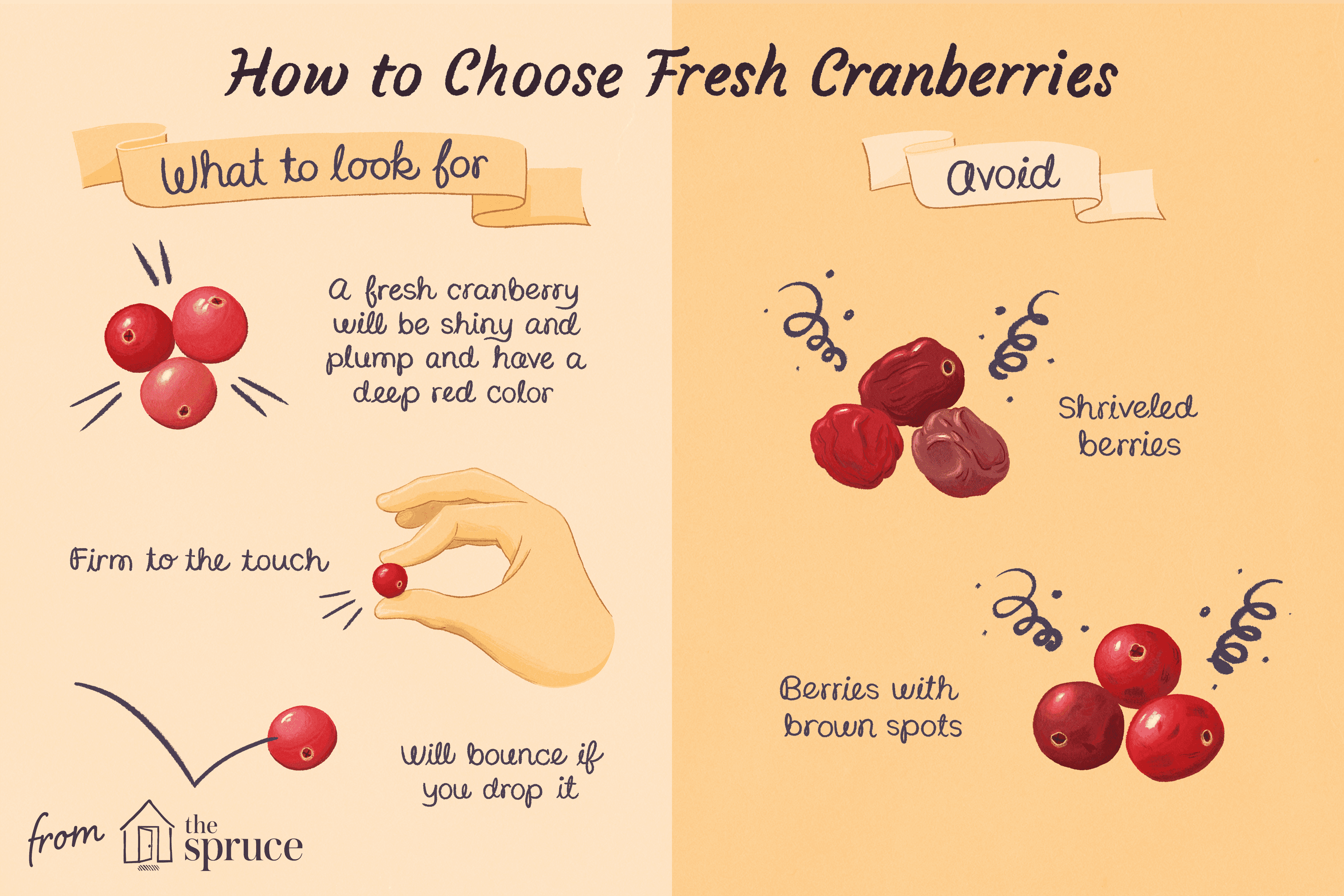 how to choose fresh cranberries