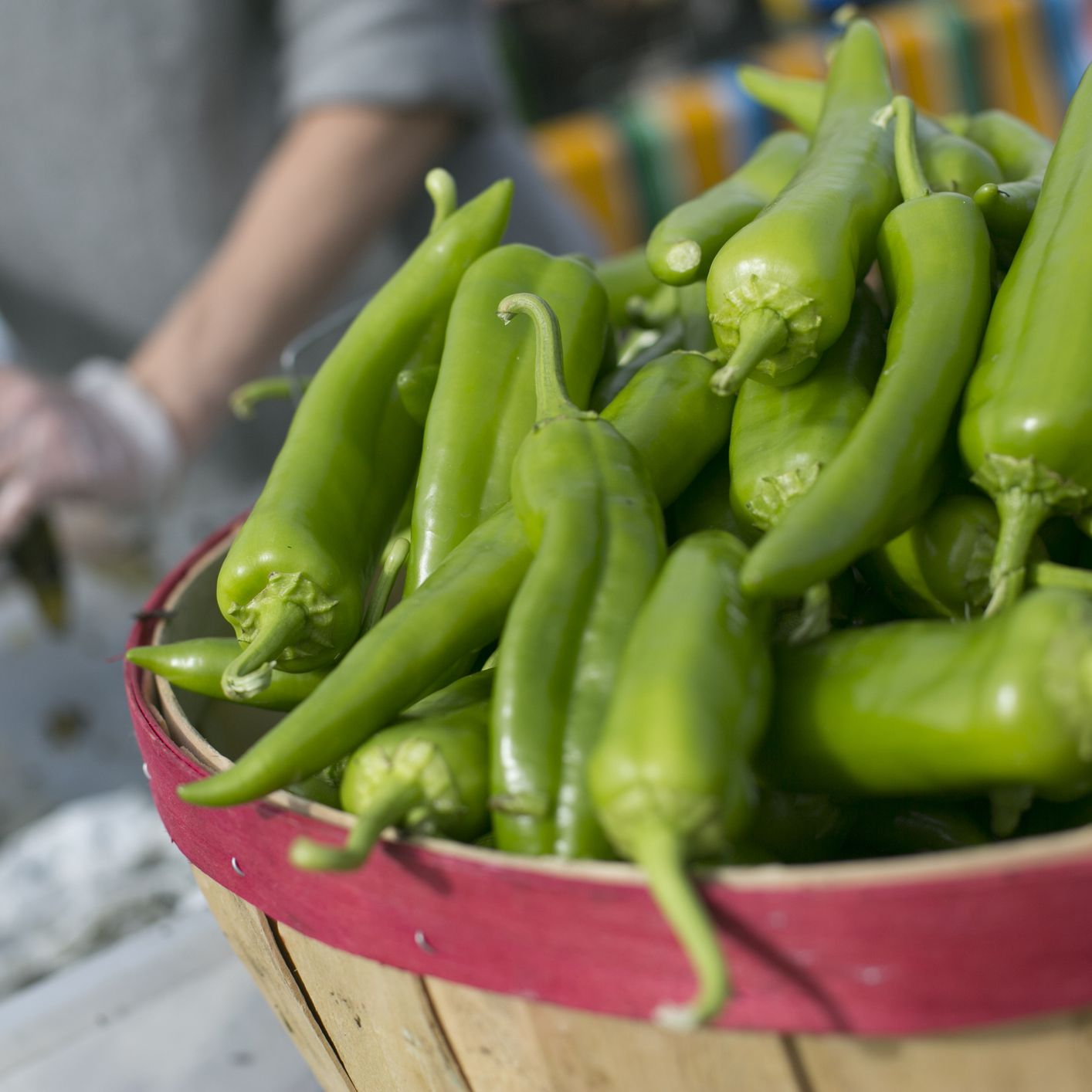 Anaheim Peppers A Mild Versatile California Chile