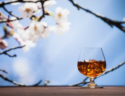 Whisky in a glass with cherry blossoms in background