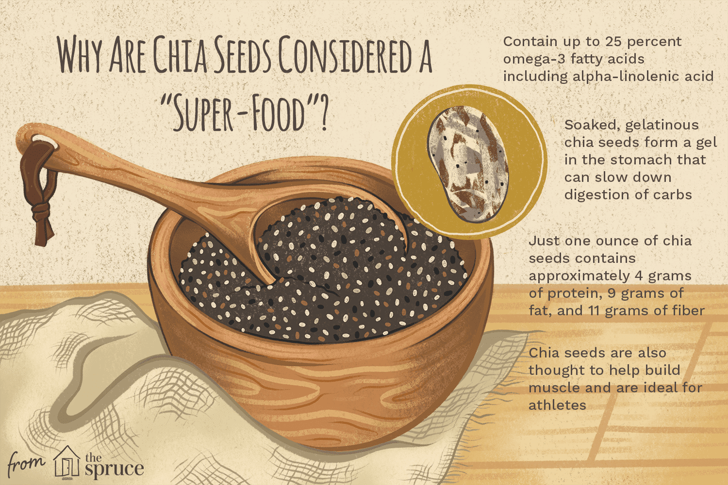 illustration with facts about chia seeds as a super food