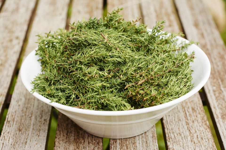 Bowl of freshly harvested common thyme