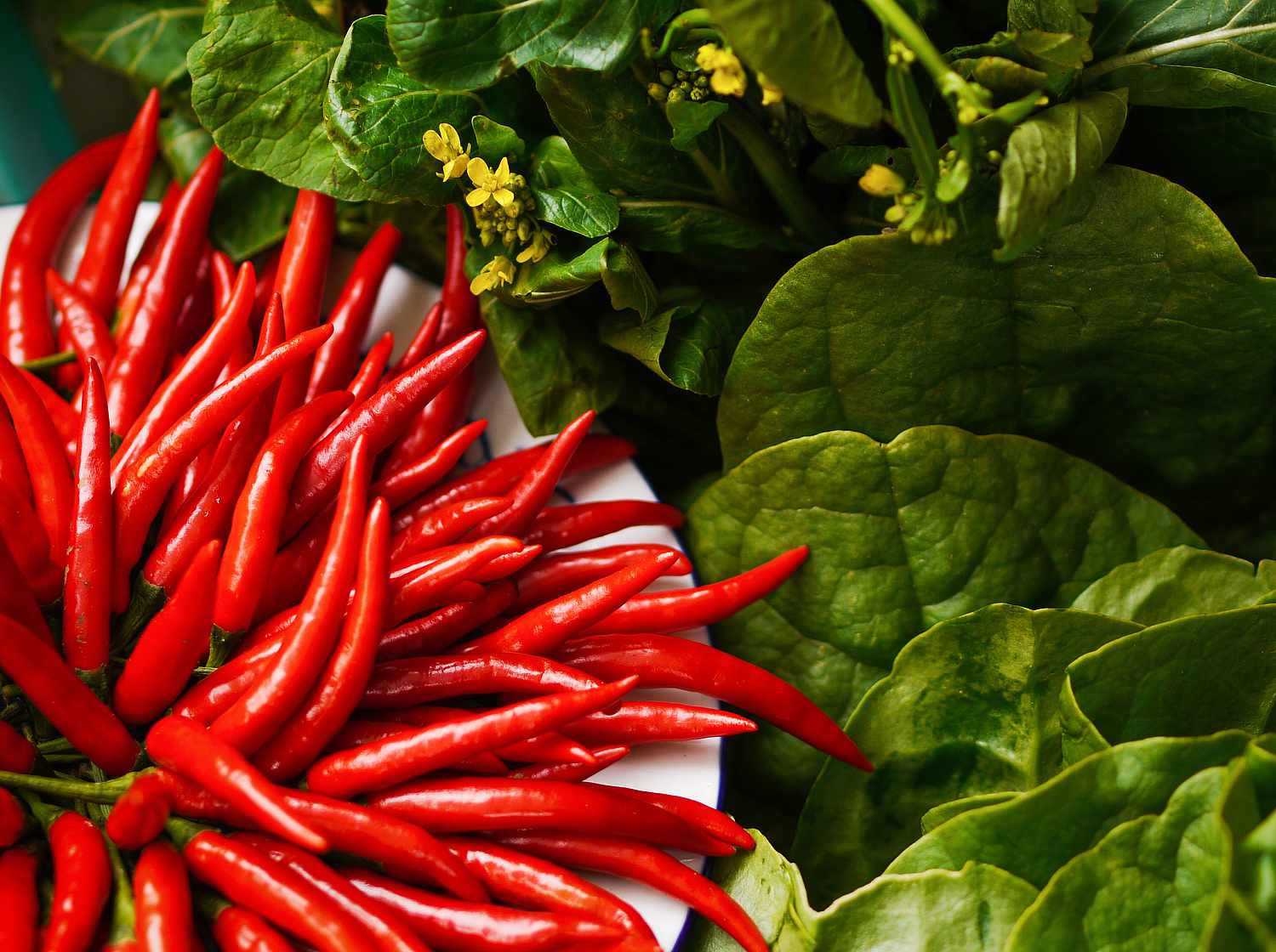 Spicy Foods That Help Fight Congestion