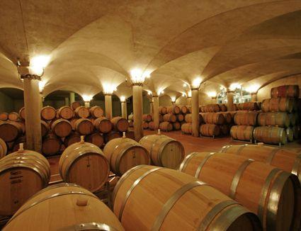 Wine barrels in wine cellar