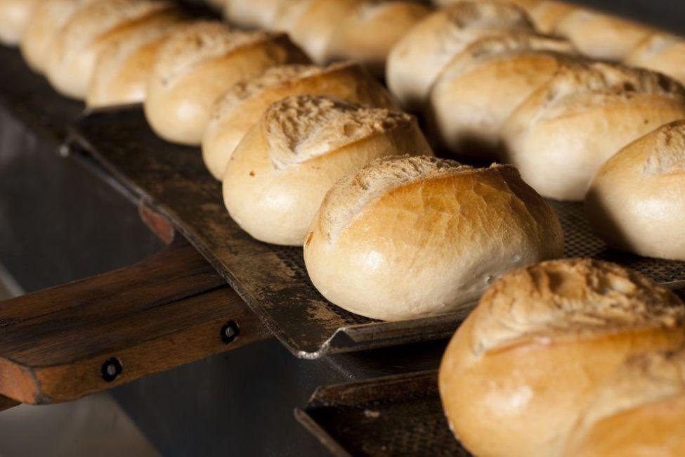Easy White Bread Rolls