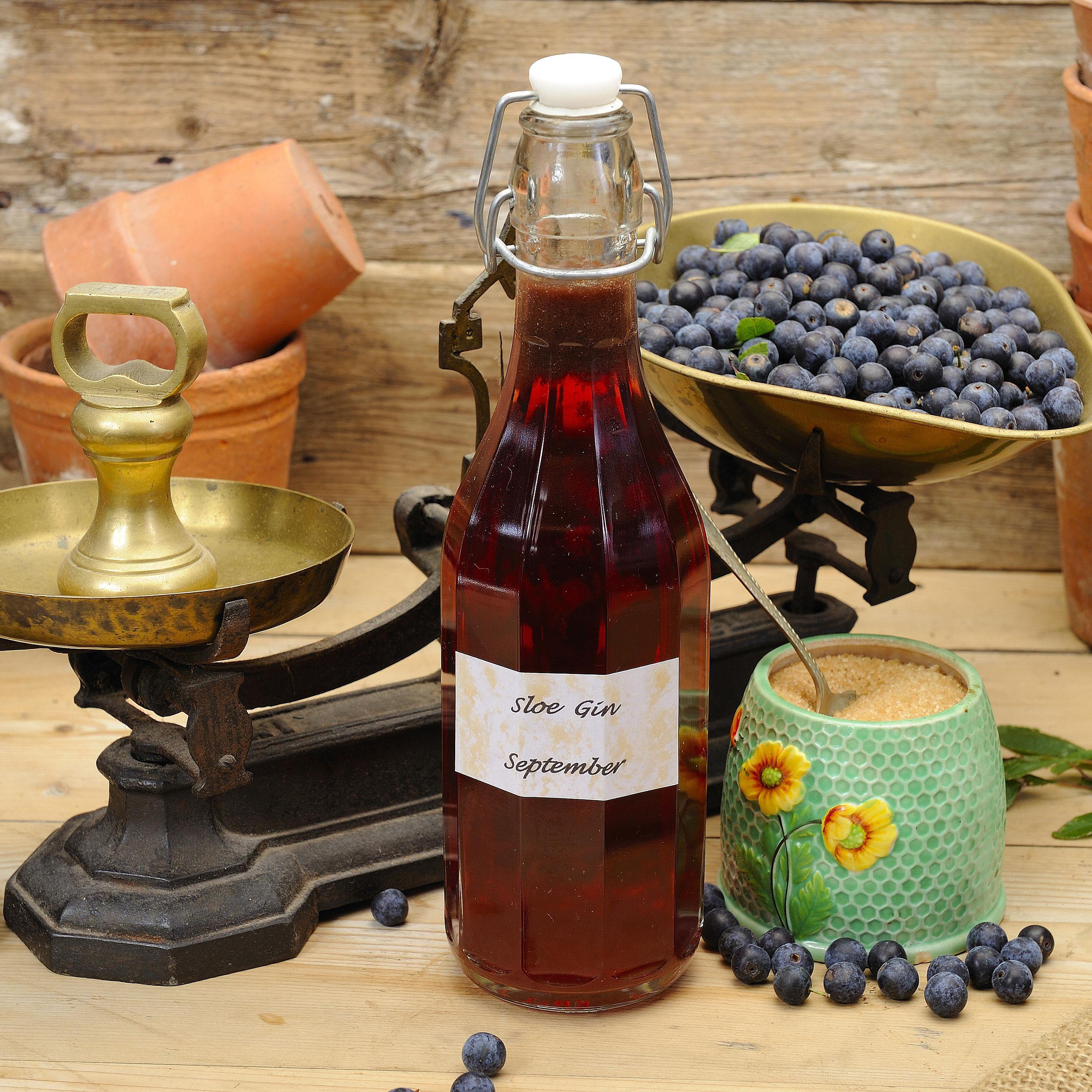 How To Make Sloe Gin >> How To Make Homemade Sloe Gin