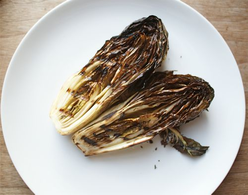 Grilled halved treviso on a white plate