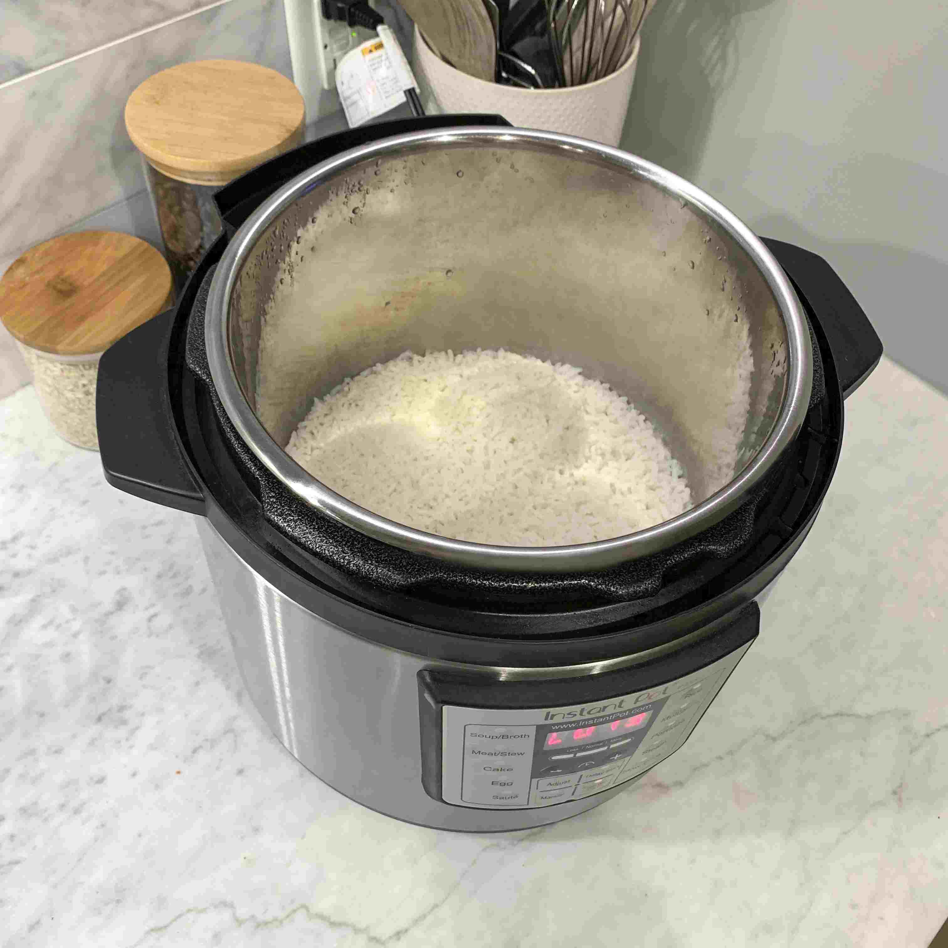 instant pot v3 programmable with rice