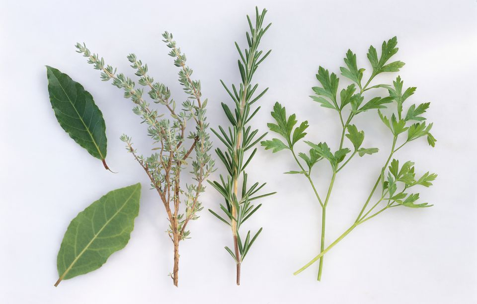 Herbs: Bay leaf, thyme, rosemary, and parsley, close-up