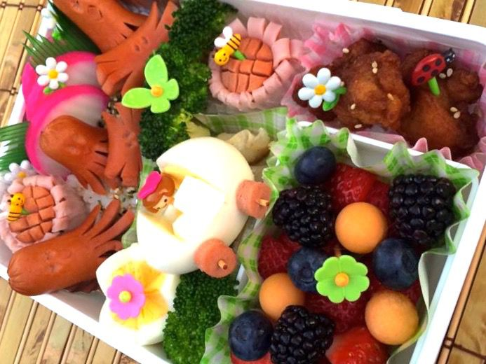 Bento Lunch with Dividers & Skewers