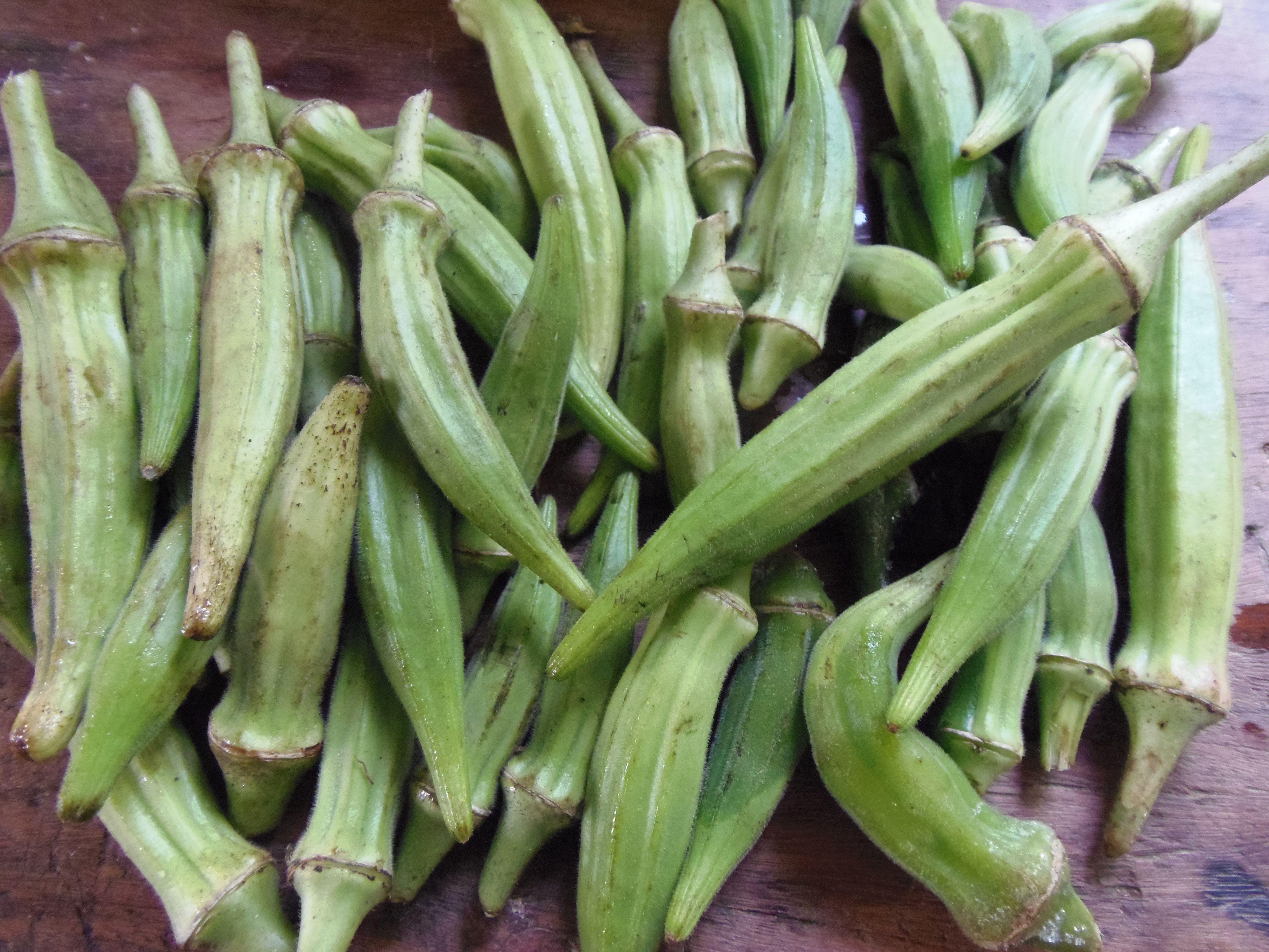 Fresh-Picked Okra