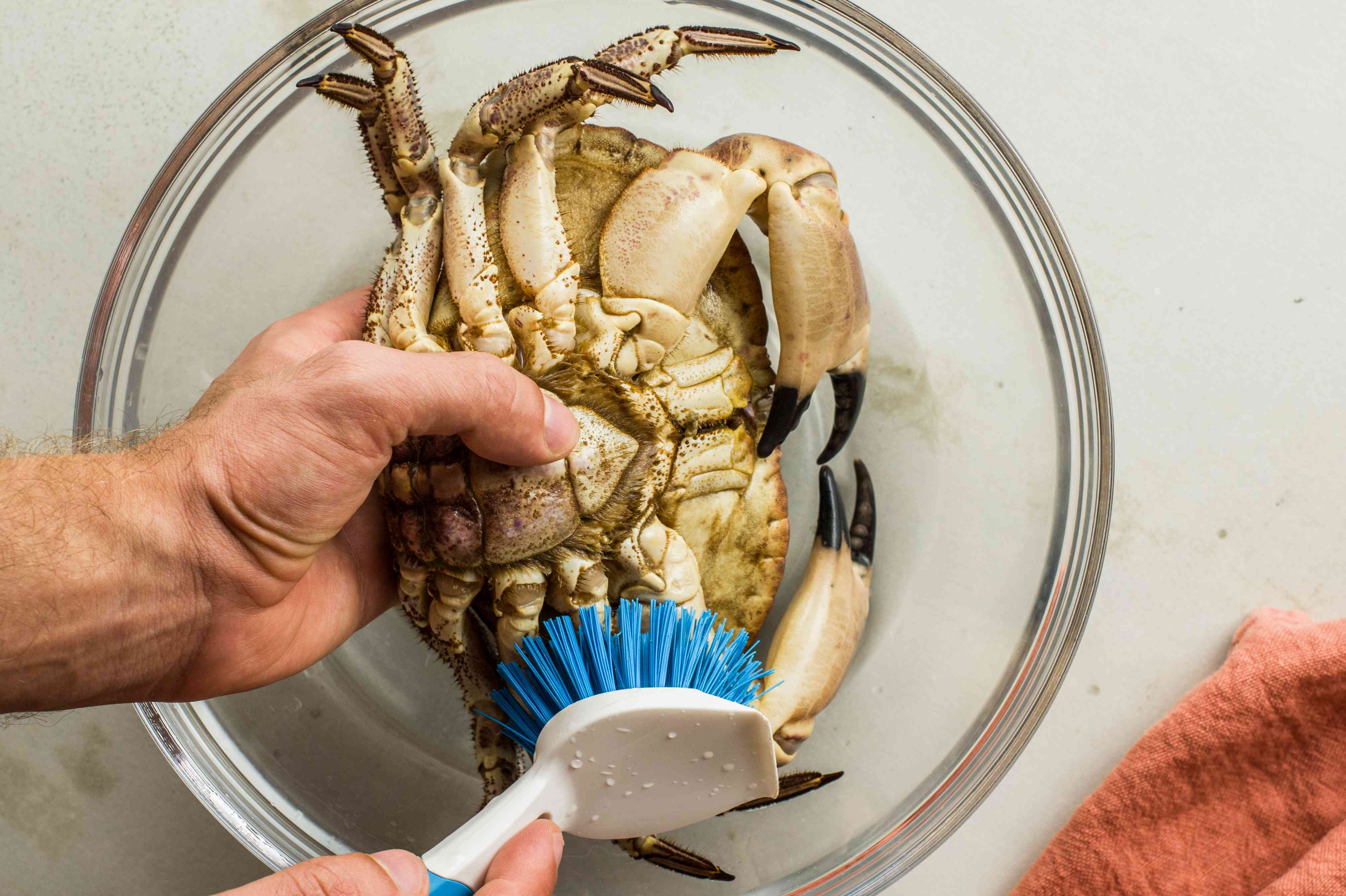 Scrub the crabs